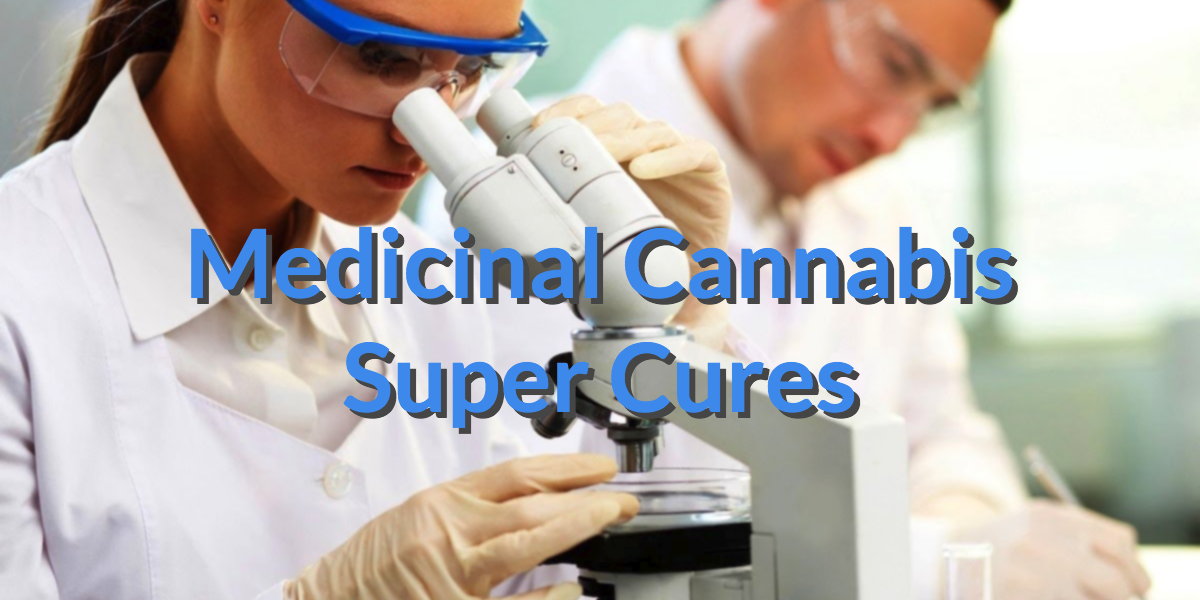 an argument in favor of using marijuana to cure cancer The study, published in 2014, is among others to support the effectiveness   what do you think about using medical marijuana to treat  i have also read that  medical marijuana reduces the growth of tumor in lung cancer patients  your  argument has no sense of perspective, whcih often happens when.