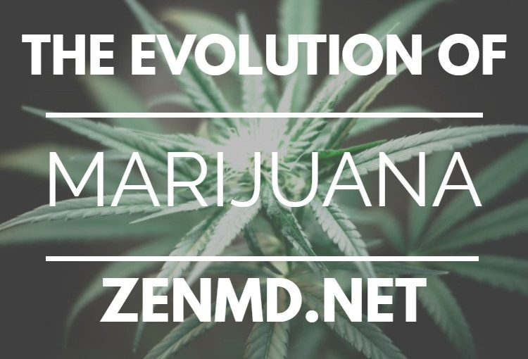 The Evolution of Medical Marijuana