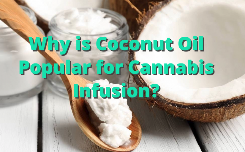Why is Coconut Oil Popular for Cannabis Infusion?