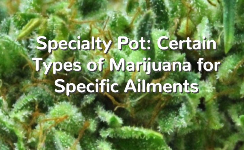 Specialty Pot: Certain Types of Marijuana for Specific Ailments