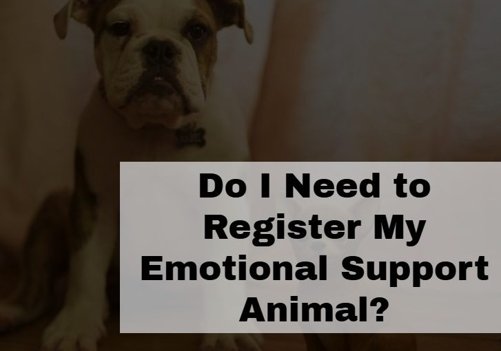 Do I Need to Register My Emotional Support Animal?